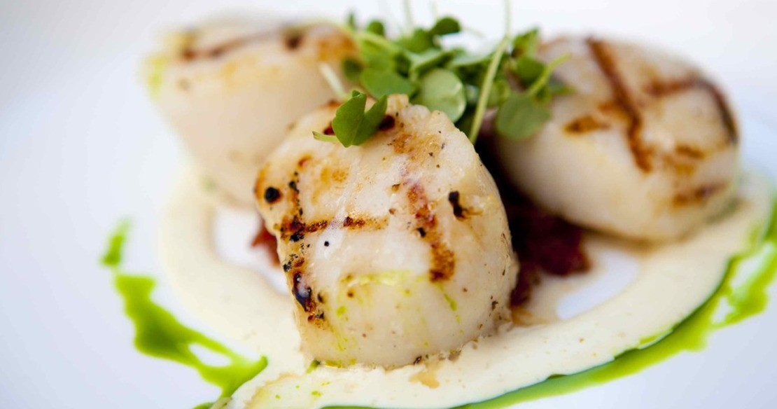 Luxury chalets with delicious food and wine - seared scallops - yum